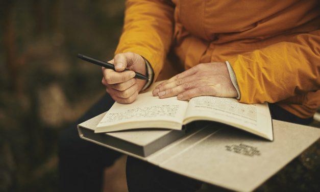 Sprachstandsnotiz für die Alphabetisierung und den Zweitschrifterwerb